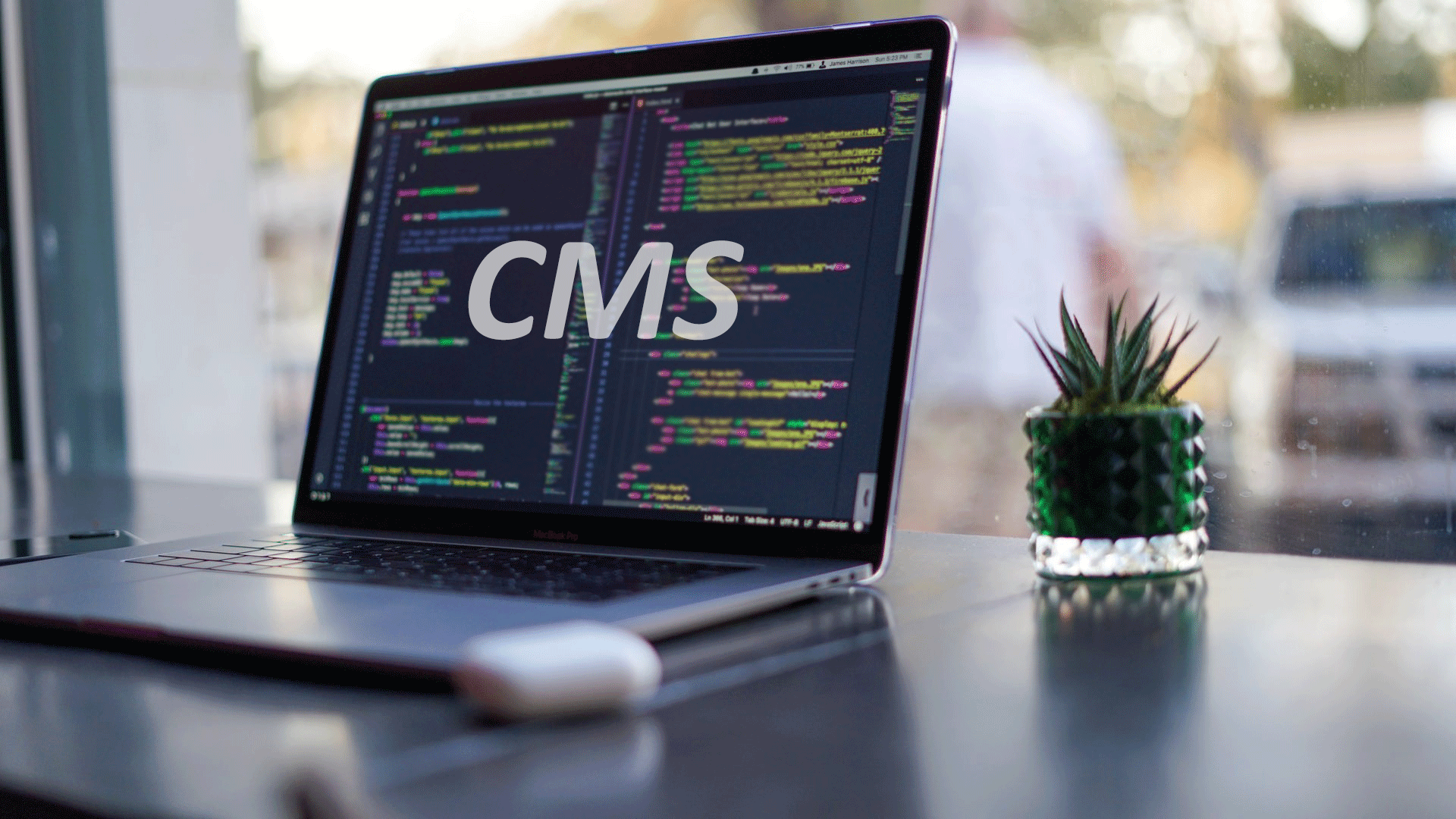CMS Development Services banner