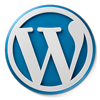 wordpress CMS development service